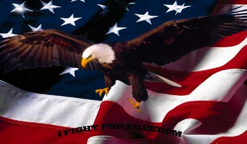 Gun Cleaning Mat bald Eagle Gun Mat made in USA