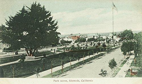 (Alameda, California - View of a City Park (12x18 Art Print, Wall Decor Travel Poster))