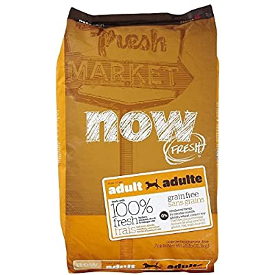 Now! Dry Dog Food For Dogs