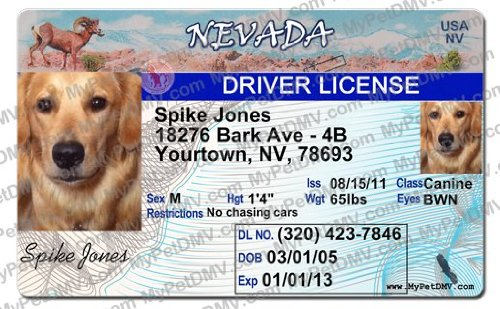 Identification Supplies Tags Tag amp; - Pet Amazon Id Drivers Nevada com License