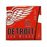 Detroit Red Wings: Original 6 Dynasties by Bob Duff,