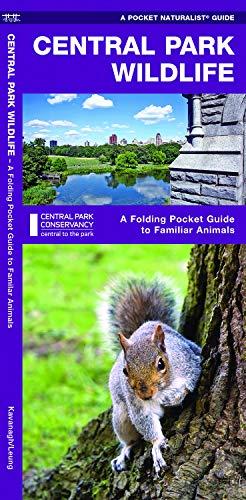 Central Park Wildlife: A Folding Pocket Guide to Familiar Species (A Pocket Naturalist Guide)