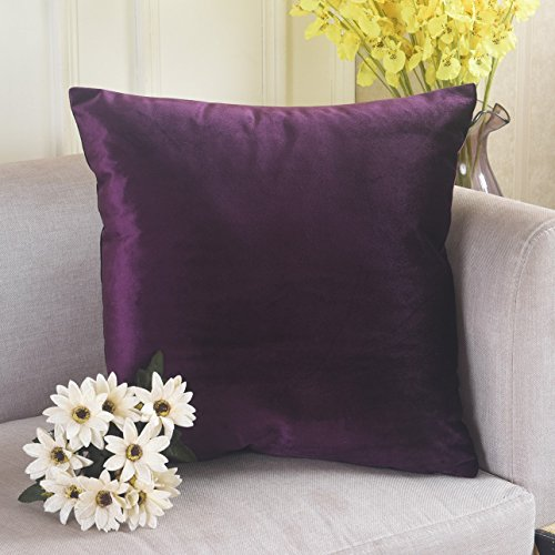Home Brilliant Velvet Decorative Euro Throw Pillow Sham Large Cushion Cover for Patio/ Kids, 26x26 inch(66cm), Eggplant