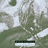 Secrets of the Beehive by DAVID SYLVIAN (2007-05-03)