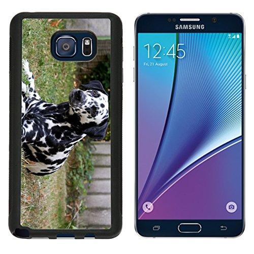 MSD Premium Samsung Galaxy Note 5 Aluminum Backplate Bumper Snap Case Hitzefrei im Garten Image 20369603486