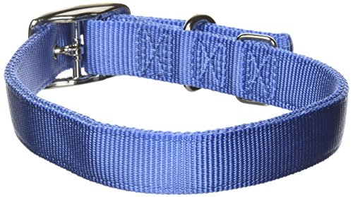 Hamilton Thick Nylon Deluxe Dog Collar, 1-Inch by 24-Inch Double, Berry Blue (Collar Dog Berry)