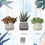 3 Pack Hanging Planter for Indoor Plants, White