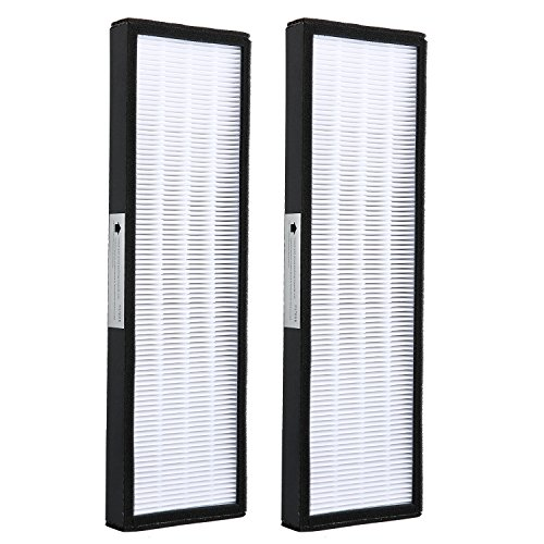 efluky FLT4825 True HEPA Air Purifier Replacement Filter B for AC4300/AC4800/AC4900 Series GermGuardian Air Purifiers(2 Pack) Review
