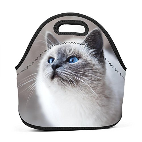 Ragdoll Kitten Cat Lunch Bag Portable Bento Pouch Lunchbox Baby Bag Multifunction Satchel Tote for Outdoor Tour School Office ()