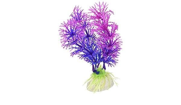 Amazon.com : eDealMax 10 piezas de plástico acuario Base de cerámica Corto planta de la hierba Decoración : Pet Supplies