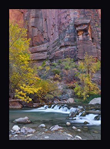 UT, Zion NP The Narrows with Cottonwood Trees by Nancy Rotenberg - 12