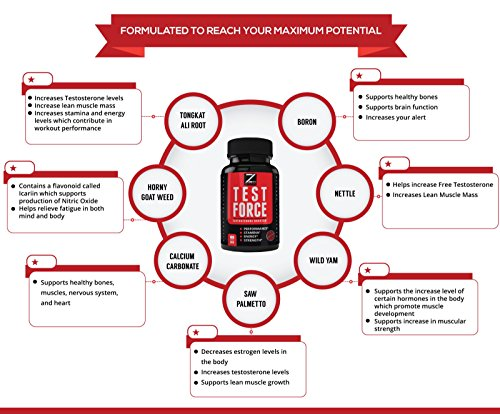 TEST:FORCE - 100% Natural Maximum Strength & Potent Testosterone Booster For Men - Supercharges Vitality, Muscle Mass & Powerful Energy Booster - Full 30-Day Cycle by Zeo Nutrition by Zeo Nutrition (Image #3)