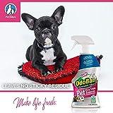 OdoBan Pet Solutions 32oz Spray Oxy Stain