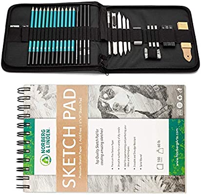Sketching,Graphite and Charcoal Pencils Art Kit and Supplies for Kids,Teens and Adults Includes Kneaded Eraser,Blending Stump Drawing Set