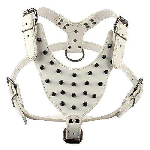 Benala Studded Leather Harness Pitbull product image