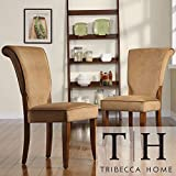 Metro Shop TRIBECCA HOME Andorra Peat Velvet Upholstered Dining Chair (Set of 2) Review