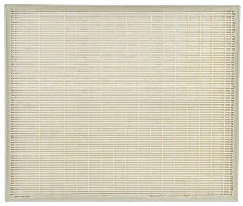 Whirlpool HEPA Replacement for AP450, AP510, AP51030K, AP51030KB, AP45030K, WP500, and WP1000 Air Filter, Large, Pearl White ()