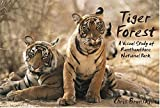 Tiger Forest: A Visual Study of Ranthambhore National Park