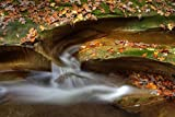 Poster Print entitled 'Fall Creek Gorge - Water Slide (IMG_6385)'. Fall Creek Gorge Nature Preserve near Attica, Indiana e with a 365 day workmanship guarantee. Inks used are latex-based and designed to last. Looks great in dorm rooms, kid rooms, off...