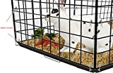 Marketing Holders Siding Edge Liner Pet Rabbit