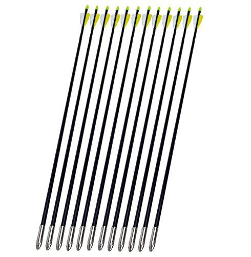 NuoYa001 Archery Arrow hunter Nocks Fletched Arrows Fiberglass Target Practice 80cm X12 (Archery Targets Cheap compare prices)