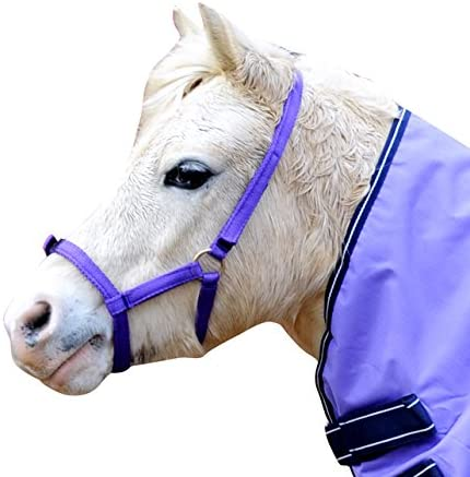 IV Horse Wee Pony Safety Turnout Headcollar
