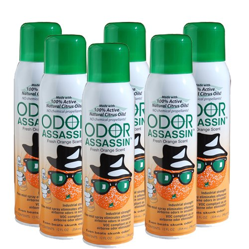 odor-assassin-12-oz-air-freshener-fine-mist-spray-orange-6-pack
