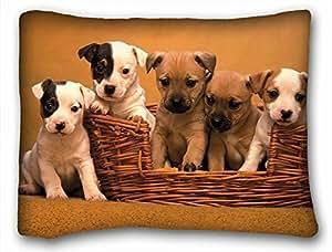 Little Guys Love Each Cute Zippered Pillow Case 20x30 (Twin sides)