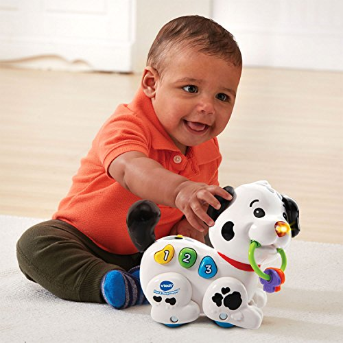 Vtech Pull And Sing Puppy Import It All