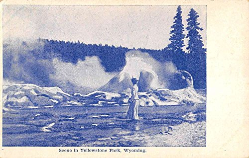 Yellowstone National Park Wyoming Geyser Scene Antique Postcard K86675