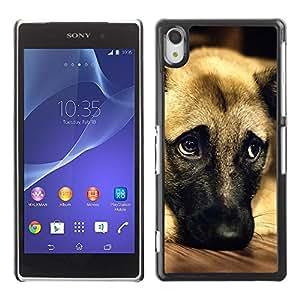 PC/Aluminum Funda Carcasa protectora para Sony Xperia Z2 D6502 D6503 D6543 L50t L50u German Shepherd Dog Anatolian Pet / JUSTGO PHONE PROTECTOR