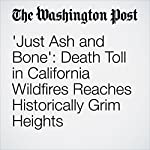 'Just Ash and Bone': Death Toll in California Wildfires Reaches Historically Grim Heights | Cleve R. Wootson Jr.,Sandhya Somashekhar,Kristine Phillips,J.Freedom du Lac