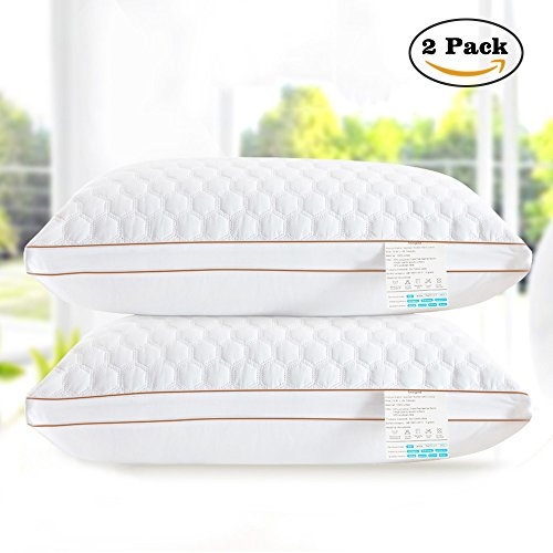 beegod Bed Pillows 2 Pack For Better Sleeping, Super Soft & Comfortable Antibacterial & Anti-mite, Best Hotel Pillows, Relief For Migraine & Neck - Map Water Tower