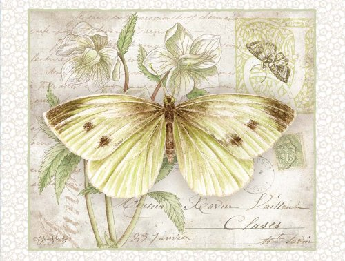 Lang Carte Postale Butterflies Deluxe Note Card Set by Jane Shasky, 5.25 x 4 Inches, 12 Cards and Envelopes (2080512)
