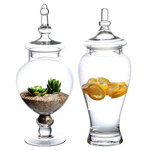 Glass Lidded Apothecary Jar (Set of 2 Large Decorative Clear Glass Apothecary Jars / Wedding Centerpieces / Candy Storage Canister - MyGift)