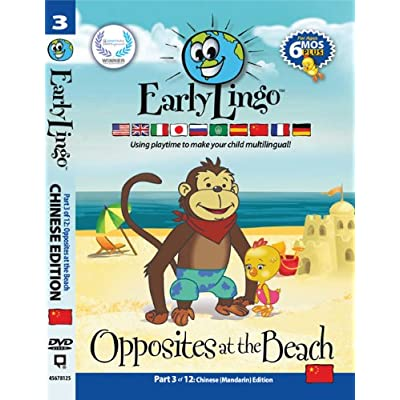 Early Lingo Opposites at The Beach DVD (Part 3 Mandarin Chinese): Caryn Antonini: Toys & Games