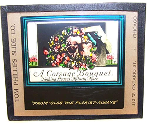 - Olds the Florist Corsage Bouquet Flowers Advertising Glass Magic Lantern Slide - Chicago