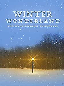 Winter Wonderland: Christmas Snowfall Background