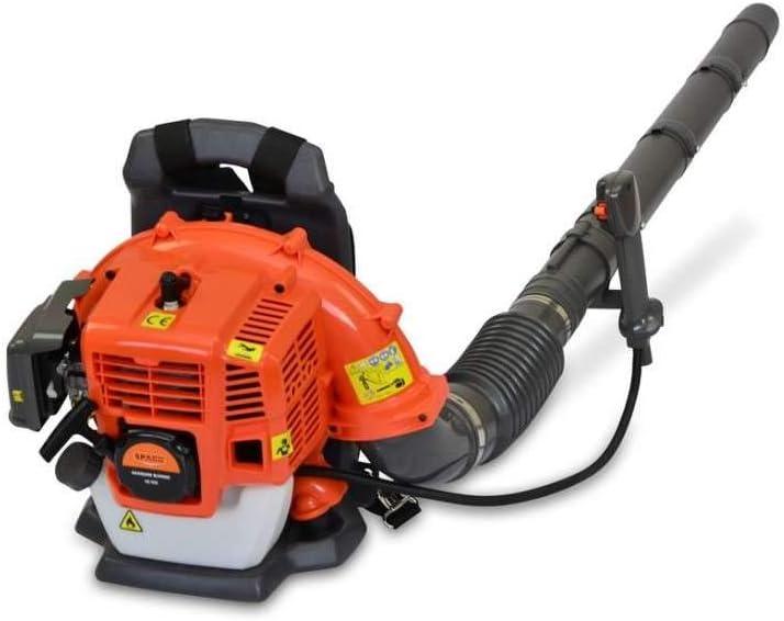 Grandmaster Soplador De Hojas con Mochila De Gasolina 42cc, Potente Motor De 2 Tiempos Refrigerado por Aire, Equipo De Seguridad, Peso 8kg