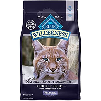Amazon Best Seller Dry Cat Food