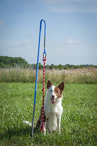 Tether Tug Interactive Dog Rope Toy (MED ()