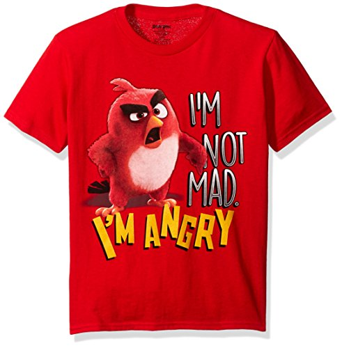 Angry Birds Boys Little Boys Short Sleeve T Shirt Shirt  Red Angry  Small 4