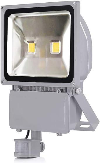 LED Fluter mit Bewegungsmelder Außen Strahler 10W-100W Scheinwerfer Flutlicht