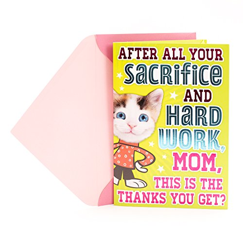 Hallmark Mother's Day Funny Greeting Card for Mom (Pop Out Cat) (Pets From Gifts)