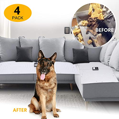 with Sofa Scram design