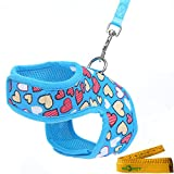 Wiz BBQT Bright Mesh Heart Printed Dog Cat Pet Vest Harness and Matching Leash Set in Blue for Tiny Newborn Dogs Cats (7.9''-9.8''-Chest Girth)