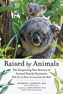 Book Cover: Raised by Animals: How Dolphins Bond, Why Meerkats Babysit, and Other Lessons from Families in the Wild