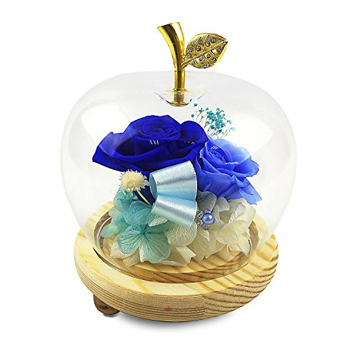 HPPFOTRS Handmade Preserved Rose Never Withered Roses Flower in Apple Glass Dome, Gift for Valentine's Day Anniversary Birthday, with LED Flash Light …