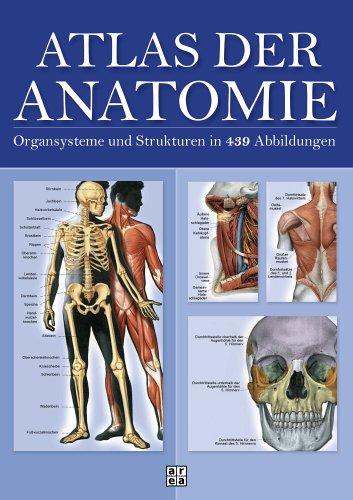 atlas-der-anatomie-organsystem-und-strukturen-in-439-abbildungen