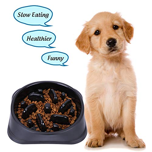 XZQTIVE Slow Feeder Bowl for Dog, Interactive Bloat Stop Dog Bowl Fun Feeder Non-Slip (OneSize, B-Black)